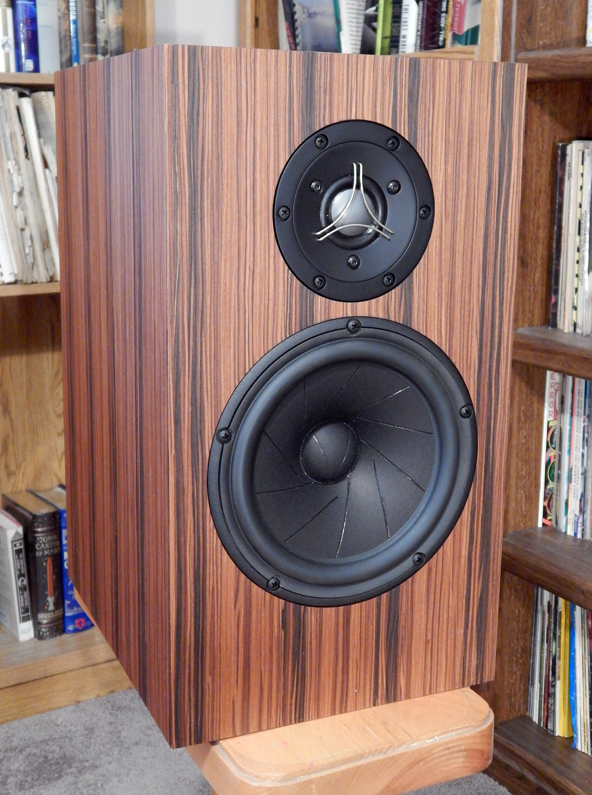 Fritz Speakers Carrera BE (SE?)